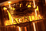 Magnum - Entertainment Group Web Design