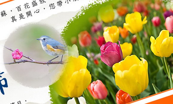 Chinese Festival E-card Design – Bank Of Communications Trustee Limited